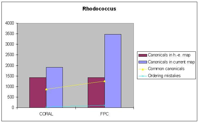 rhodococcus.jpg