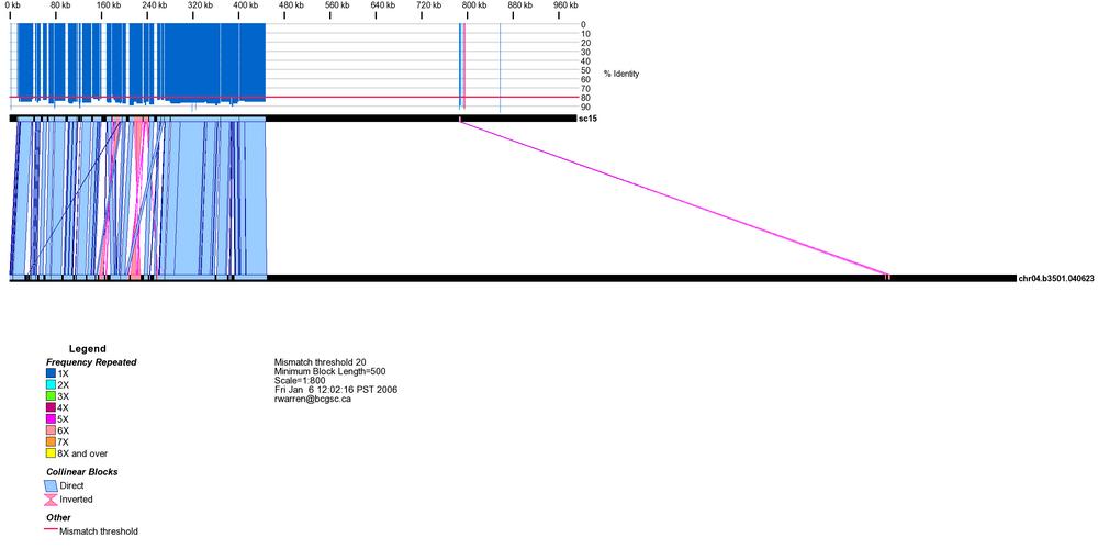 Alignment between C. gattii strain WM276 and B3501